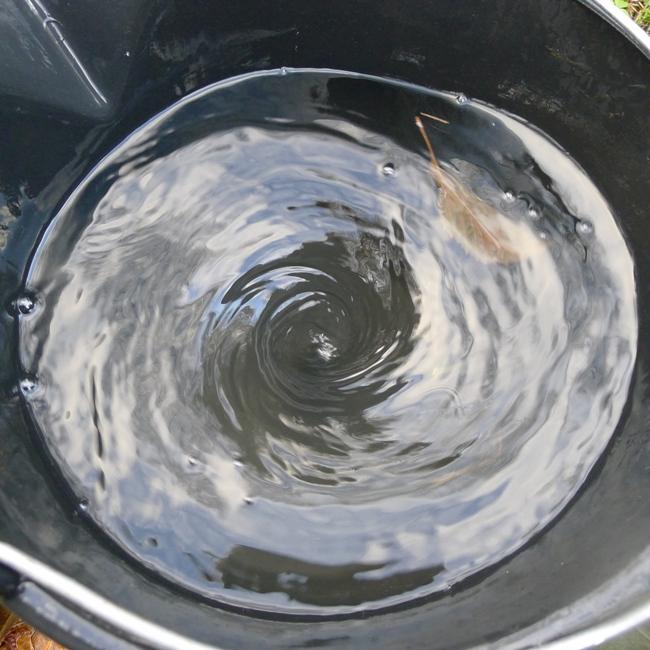 Water vortex in bucket